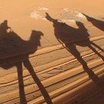 Jeux d'ombres au soleil couchant