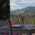 Nuestras vistas desde la terraza