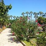 Photo of Cavo Maris Beach Hotel
