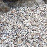 Point of Rocks Foto