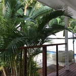 Byron Cove Beach House Foto