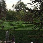 VanDusen Botanical Garden Foto
