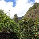 Iao Valley State Monument - TEMPORARILY CLOSED Foto