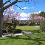The formal garden in Spring at Hillsfield House