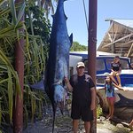 The biggest fish I've ever seen!