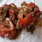 Photo of Dancing Crab