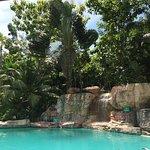 Sepilok Jungle Resort Foto