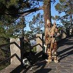 Guanche sur la route du Teide