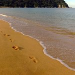 Footprints at Totaranui Beach
