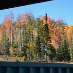 From our cabin porch.