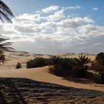 Les dunes à côté de l'hôtel, balade à pied