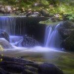 Local waterfalls are beautiful