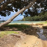 Foto de Explore - Discover the Bay