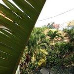 Botanic Garden Homestay-billede