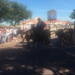 Hyatt Place Ft. Worth Historic Stockyards Foto