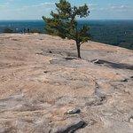 Stone Mountain Carving Foto