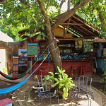 patio and hammocks