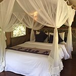 Sarova Mara Game Camp Photo