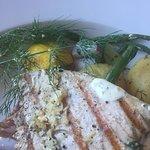 Halstrad tonfisk 5/5