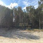 Grassflat Swamp Flora and Fauna Reserve