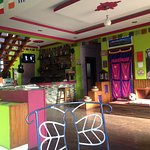 The Sparkling Turtle Backpackers Hostel Bild