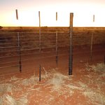 Farmfence with sunset