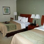 Comfort Inn Near Greenfield Village-bild