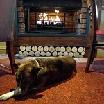 Dog-friendly area, cosy down by the fireplace