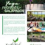 Semilla Verde's Galapagos Islands Yoga Retreats