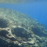 Part of the ship wreck on outer reef
