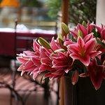 Photo of Cafe Goethe