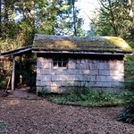 The Ecolodge at the Tofino Botanical Gardens Φωτογραφία
