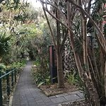 Kangaroo Island Seafront Foto