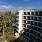 Seaside Palm Beach-billede