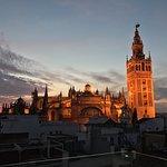 Blick auf die Kathedrale vom Dach aus
