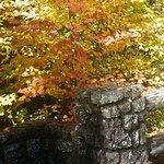 sahalie falls, fall, harvest festival in Sisters