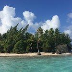 Foto de Tikehau Ninamu Resort