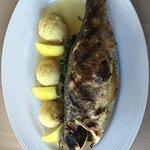 صورة فوتوغرافية لـ Ithaki Mediterranean Cuisine