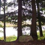 Husky Haven Campground Foto