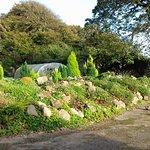 Rockery in the walled garden