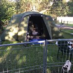 Awesome powered fenced camping site