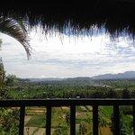 Kubu Carik Bali Foto