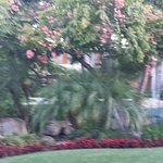 Sheraton La Jolla Hotel Foto