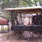 Photo of Mara Bush Camp