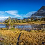 The views along the Hidden Lake trail, Logan Pass.