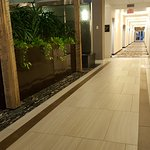 Foto di Embassy Suites by Hilton Williamsburg