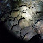 Foto di Lava River Cave