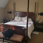 Royal Park Suite master bedroom (my hubby paid for the rose petals)