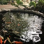 The Parkside Hotel & Spa Foto