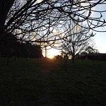 Sunset at Greentrees